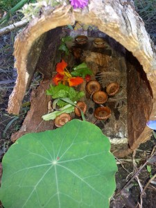 fall fairy house