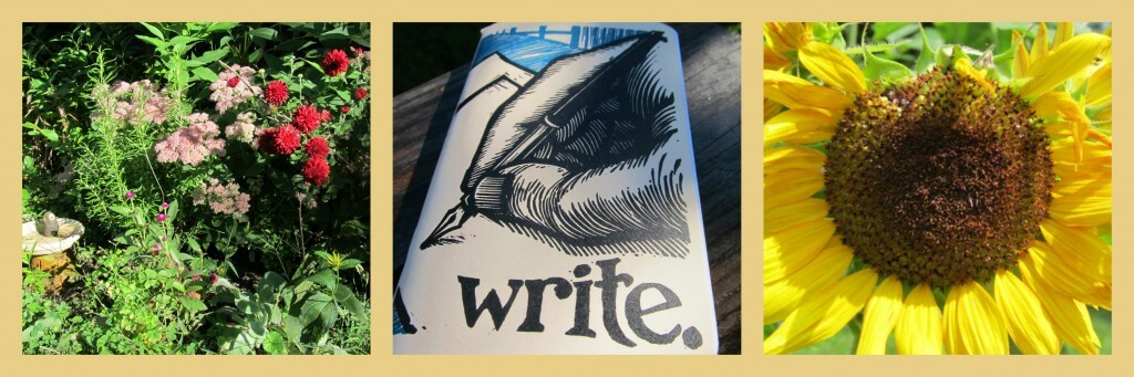 Notice your world and write it—www.sarabarry.com