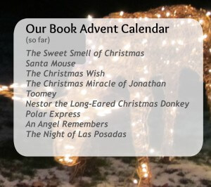 A list of books in our advent calendar this year